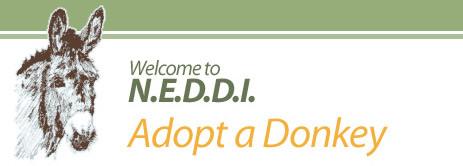 N.E.D.D.I. - Adopt a Donkey