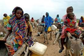 darfur children & donkeys